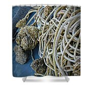 Tangles Of Seaweed Shower Curtain