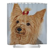 Tara The Yorkie Shower Curtain