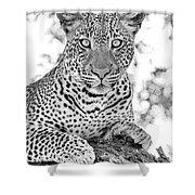 Tarangire Leopard Shower Curtain