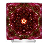 Tarantula Nebula II Shower Curtain
