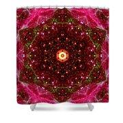 Tarantula Nebula IIi Shower Curtain
