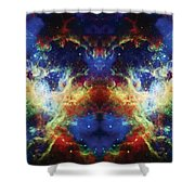 Tarantula Reflection 2 Shower Curtain by Jennifer Rondinelli Reilly - Fine Art Photography