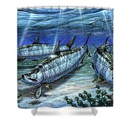 Tarpon In Paradise - Sabalo Shower Curtain by Terry Fox