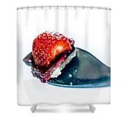 Taste Sensation On A Silver Spoon Shower Curtain