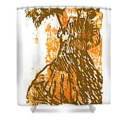 Tattered Parasol Shower Curtain