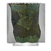 Tea Bowl #9 Shower Curtain