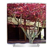 Tea House Thru The Maple Shower Curtain