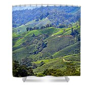 Tea Plantation In The Cameron Highlands Malaysia Shower Curtain