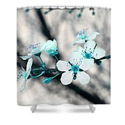 Teal Blossoms Shower Curtain