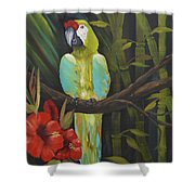 Teal Chartreuse Parrot Shower Curtain