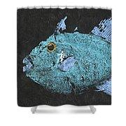 Gyotaku Triggerfish Shower Curtain by Captain Warren Sellers