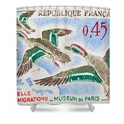 Teal Study Of Migration-museum Of Paris Shower Curtain