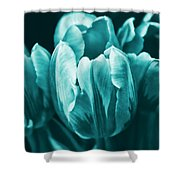 Teal Tulip Flowers Shower Curtain