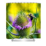 Teasel And Bee Shower Curtain
