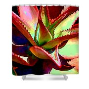 Technicolored Agave Succulent Shower Curtain