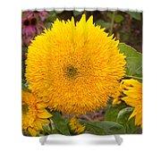 Teddy Bear Sunflower 2 Shower Curtain