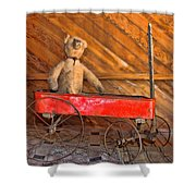 Teddy Takes A Ride Shower Curtain