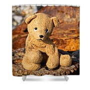 Ted's On The Rust Pile 2 Shower Curtain