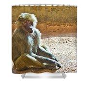 Teen Baboon Shower Curtain