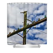 Telegraph Pole - Yesterdays Technology Shower Curtain