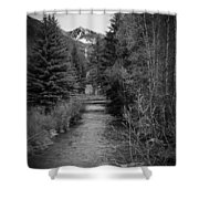 Telluride Stream Shower Curtain