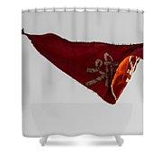 Temple Flag Shower Curtain
