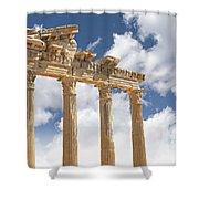 Temple Of Apollo Shower Curtain