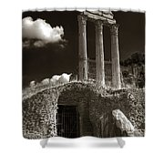 Temple Of Castor And Polux Shower Curtain