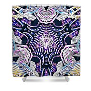 Temple Of Simha Shower Curtain by Derek Gedney