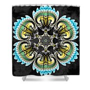 Temple Of The Ram Shower Curtain