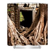 Temple Ruins 01 Shower Curtain