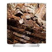 Temple Ruins 04 Shower Curtain