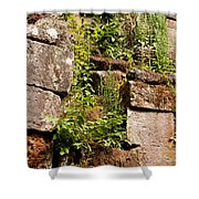 Temple Ruins 05 Shower Curtain