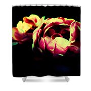 Tender Pink Shower Curtain