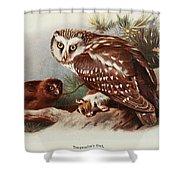 Tengmalms Owl Shower Curtain