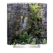 Tennessee Limestone Layer Deposits Shower Curtain