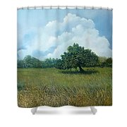 Tensegridad Shower Curtain