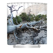 Tent Rocks 10 Shower Curtain