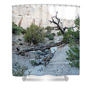 Tent Rocks 9 Shower Curtain