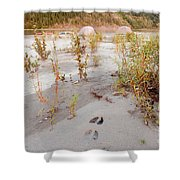 Tents At Yukon River In Remote Taiga Wilderness Shower Curtain
