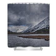 Tern Lake Shower Curtain