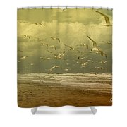 Terns In The Clouds Shower Curtain