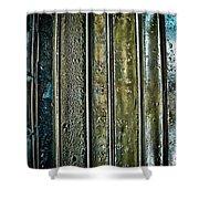 Terra Incognita Shower Curtain