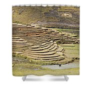 Terraces And Paddy Fields Shower Curtain