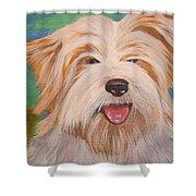 Terrier Portrait Shower Curtain