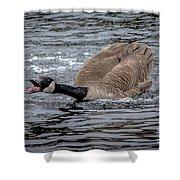 Territorial Canadian Goose Shower Curtain