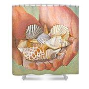 Tesori Del Mare - Treasures Of The Sea Shower Curtain