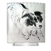Tess Shower Curtain