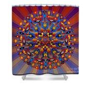Tesserae 2012 Shower Curtain