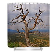 Testament To Endurance Shower Curtain